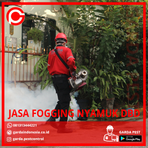 Jasa Fogging Nyamuk DBD di Andir Bandung